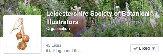 Leicestershire Society of Botanical Illustrators - Facebook Page