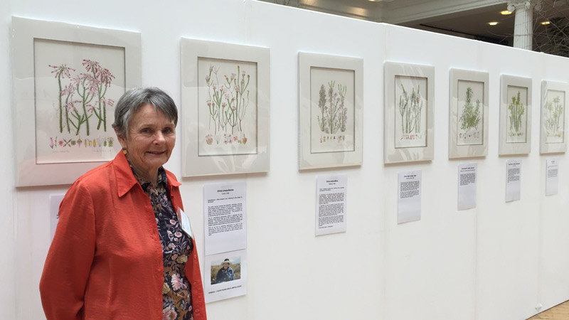 Margaret de Villers at the 2016 RHS London Botanical Art Show