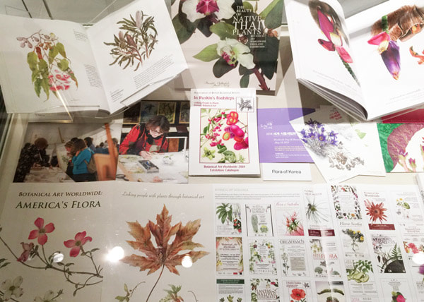 NEWS about Botanical Art and for Botanical Artists