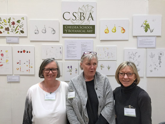 Chelsea School of Botanical Art