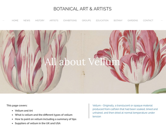 All About Vellum for Botanical Art and Artists
