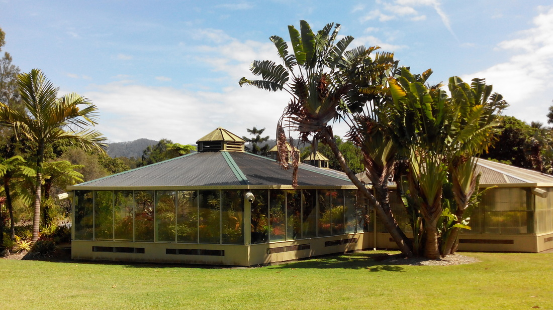 Glasshouses in the North Coast Regional Botanic Gardens, Coffs Harbour, NSW, Australia