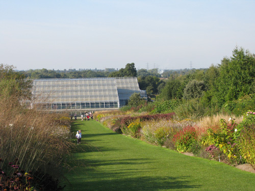 Glasshouse at Wisley