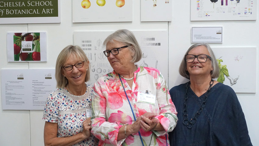 Mary Ellen Taylor, Helen Allen and Elaine Searle of the Chelsea School of Botanical Art