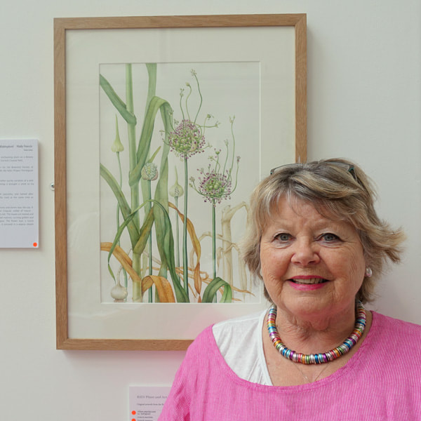 Mally Francis with her painting of Babington's Leek (Allium ampeloprasum var.babingtonii) at the RHS Botanical Art Show 2018 (12th July 2018)