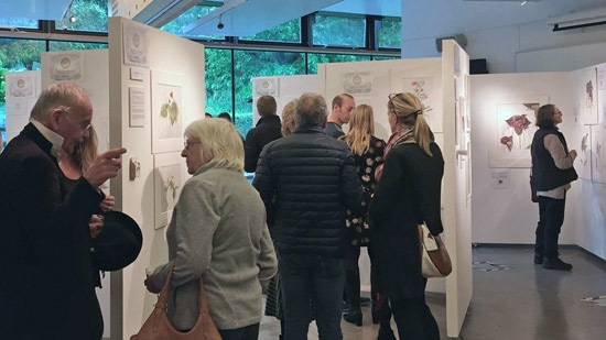 Preview evening at John Hope Gateway, Royal Botanic Garden Edinburgh