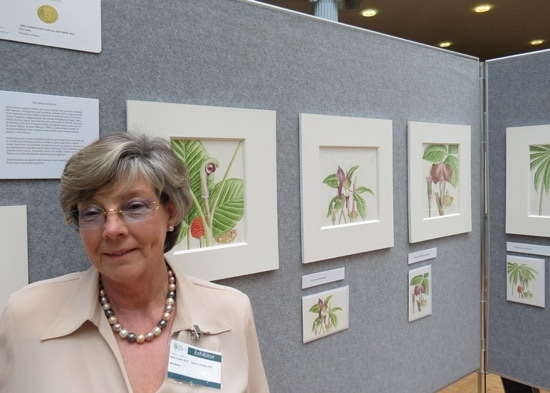 Nikki Marks with her 2014 RHS Gold Medal winning display of The Genus Arisaema