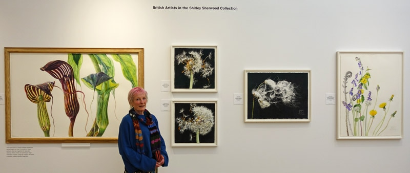 Rosie Sanders with the display of her paintings at the 'British Artists in the Shirley Sherwood Collection at Kew