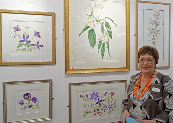 Sandra Wall Armitage PSBA with her paintings at the 2016 Annual Exhibition of the Society of Botanical Artists